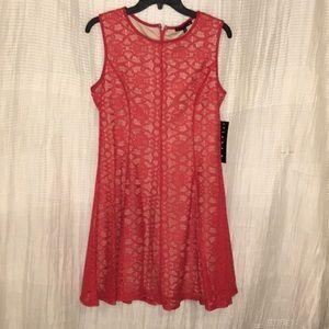 New TIANA B. DRESS